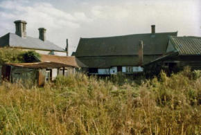 Rear of former White Horse.  1980